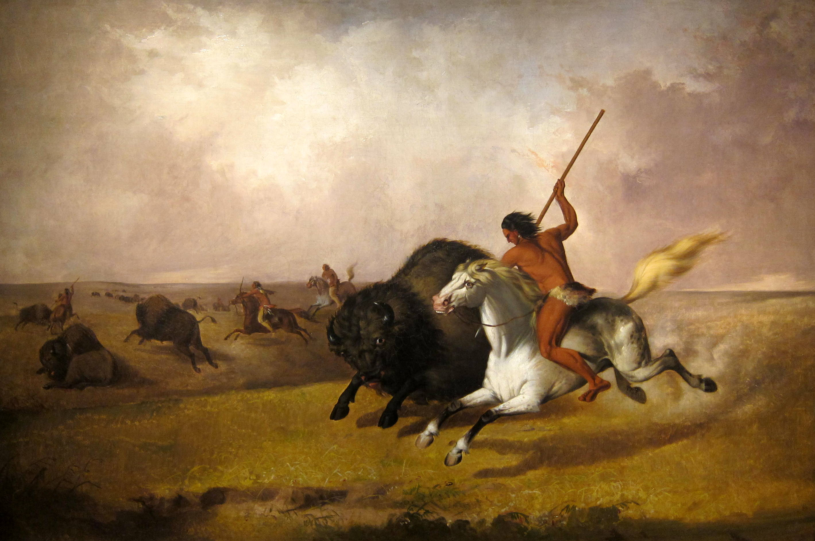 blackfeet perspective on scalping From the blackfoot perspective, he was not only trespassing on their hunting grounds, but he was also stealing their resources colter is captured instead of killing him, they strip him naked, and tell him to run for his life.